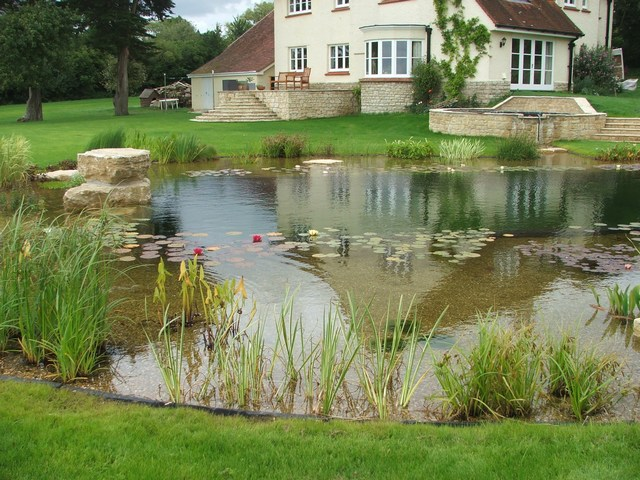 Image gallery swimming pond for Swimming pools that look like ponds