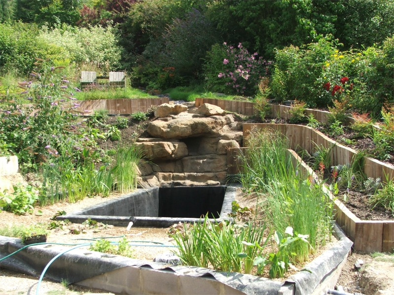 Anglo swimming ponds review our portfolio for Small natural pond